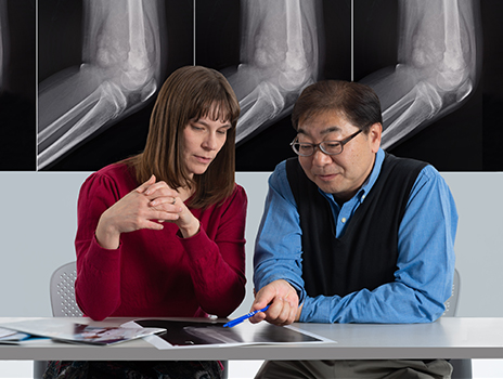 Researchers looking at bone scan.